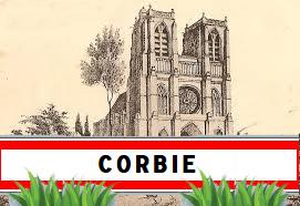 corbie80